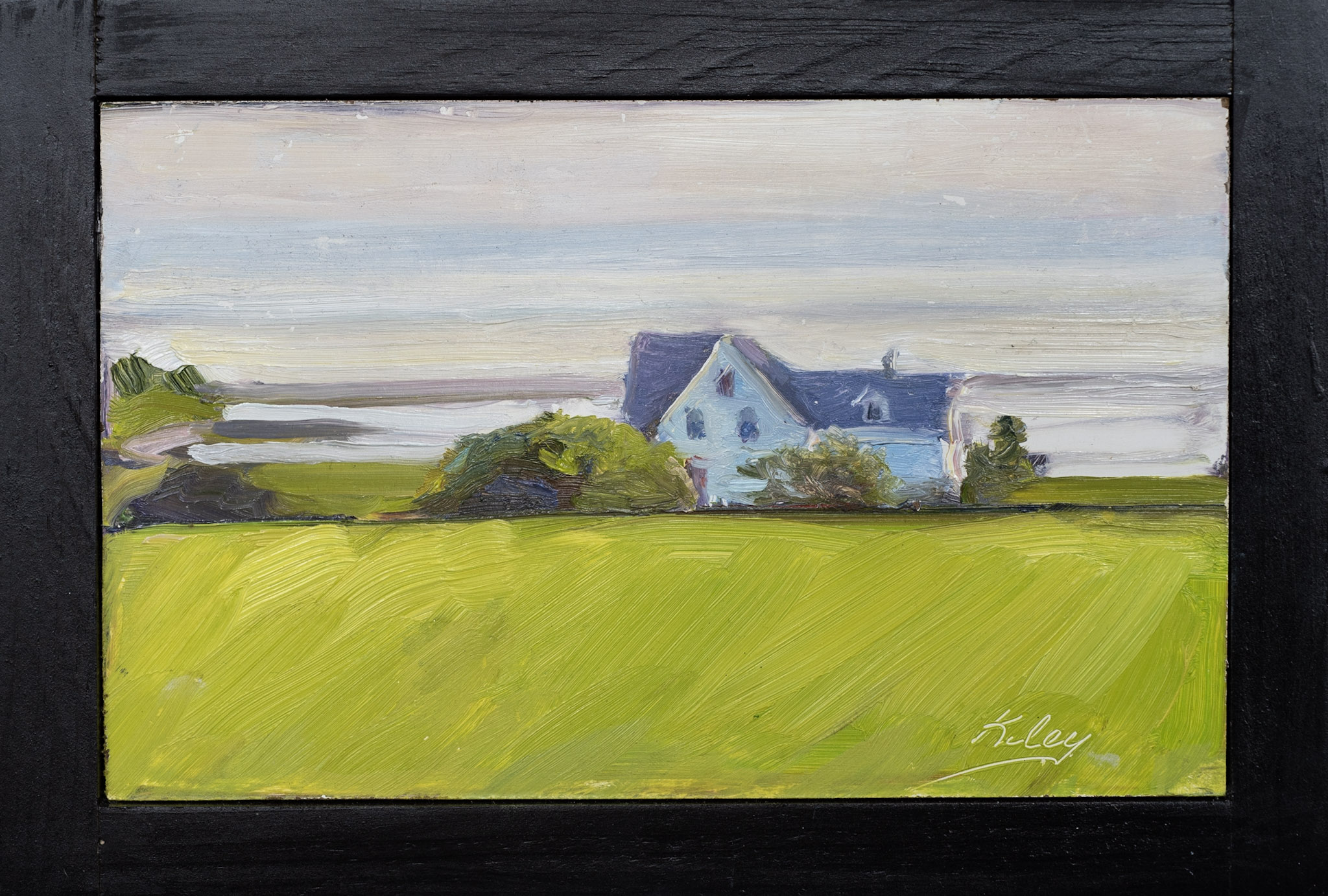 """#12:  """"House on the Green Field"""""""