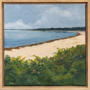 "#1:  ""Looking North from Little Island"""